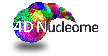هسته  4D 4DN logo 375x195