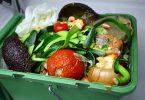 علم، ایمنی، و اعتماد: در مورد مواد غذایی تراریخت lebensmittel in der tonne patryssia fotolia 37993425 m 1 145x100
